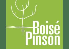 logoVERT_BoisePinson-01